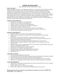 Net Developer Resume Interesting Net Developer Resume Summary