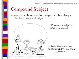 chapter 4 parts of the sentence subject predicate