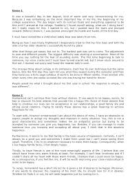 Bad Essay Example High School Persuasive Essay Examples Example
