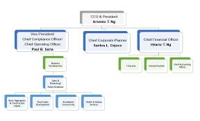 Atn Holdings Inc