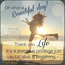 What A Beautiful Day Quotes
