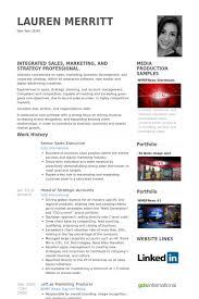 Senior Sales Executive Resume Samples - Visualcv Resume Samples Database