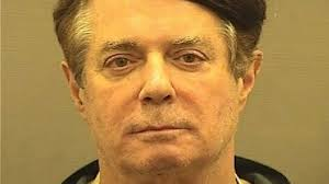 Image result for google images of Paul Manafort