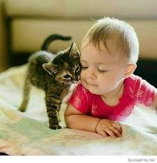 cute baby images for whatsapp dp