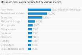 Maximum Calories Per Day Needed By Various Species