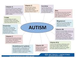 Causes Of Autism Essay Sample