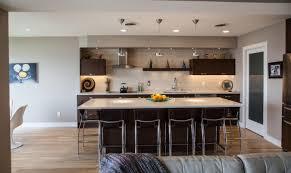 ravishing kitchen remodeling madison wi pool minimalist 282018 on dream kitchens madison gallery dream house dream
