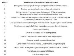 Newborn Development Chart Week By Week Fetus Growth Stages And Viability