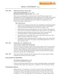 IT Sales Manager Resume Example