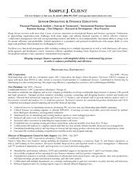 finance operations analyst resume cipanewsletter executive management sample resume career change cover letter
