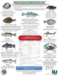 Crabbing And Fishing