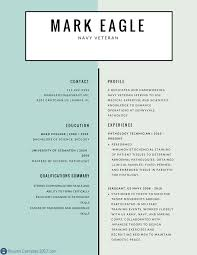 Resume Examples 2017 Gallery Of Best Resume Examples 24 Online Resumes Great Teaching 6