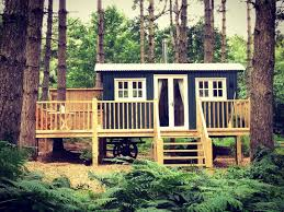 Wooden Treehouse On Oaks  Treehouse Treehouses And ArchitectureTreehouse Lake District