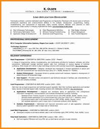 Computer Programmer Resume Examples Computer Programmer Resume