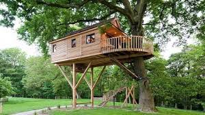 TOP 10 Coolest Tree Houses Design ever Modern Tiny Tree House