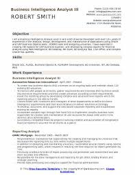 Business Intelligence Specialist Sample Resume