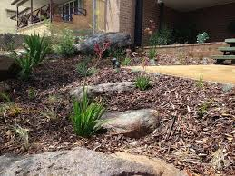 Small Picture 92 best New front native garden images on Pinterest Native