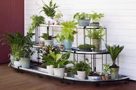 wonderful plant stands indoor