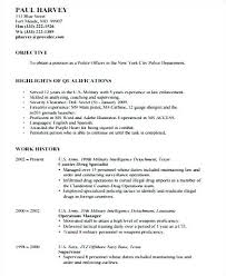 20 New Security Officer Resume Sample Igreba Com
