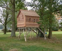 Treehouse Ideas For Kids  Resolve40comKids Treehouse Design