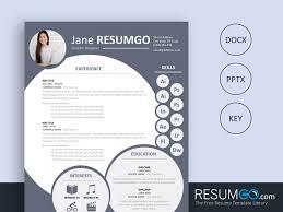 Nephele Creative Resume Template Resumgocom