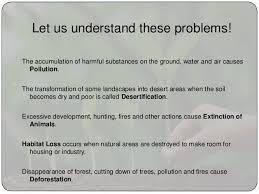 environment essay