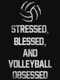 Volleyball Quotes Best Stressed Blessed And Volleyball Obsessed Funny Volleyball Quotes