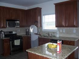 Kitchen Theme For Apartments Kitchen Decorating Themes Kitchen Decorating Ideas Impressive