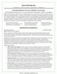 Regular Business Analyst Project Manager Resume Sample Business