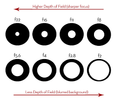 Photography Depth Of Field Chart Learning The Art Of Photography Aperture And Depth Of Field