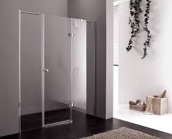 transpa glass door shower