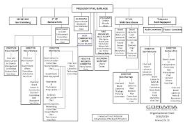 Committee Organization Chart Cobwra Board Committee Organizational Chart Coalition Of