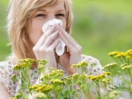 аллергия с нсп