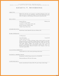 Ms Word Resume Templates Professional Simple Resume Template Word