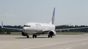 Dog Dies In Overhead Bin On United Flight; Airline Apologizes : The ...