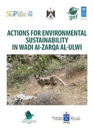 (PDF) Actions for Environmental Sustainability in Wadi Al-Zarqa Al ...