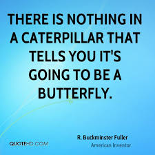 What Is Quote Amazing R Buckminster Fuller Nature Quotes QuoteHD