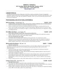 Drafting Resume Examples Drafter Resume Sample Objective With Additional Stunning