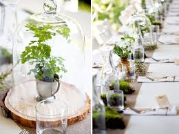 a cloche over a green plant is a simple and elegant nature inspired  centerpiece