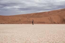 Биом пустыни характеристика самого засушливого наземного биома мира биомы пустыни пустыня сухое дерево гора небо облака пейжаз