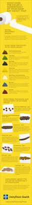What The Color And Consistency Of Your Poop Says About You