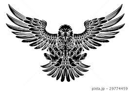 Swooping Eagleのイラスト素材 29774459 Pixta