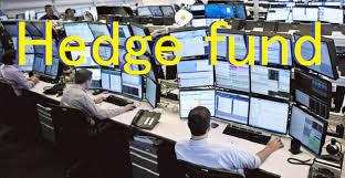 「ヘッジファンド」の画像検索結果