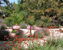 Small Picture 104 best Drought Tolerant Garden images on Pinterest Landscaping