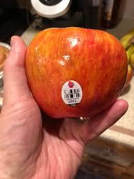 the north country honeycrisp apple image 2018 f p dorchak
