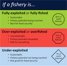 Seafood Yield Chart How Many Fisheries Are Overfished Sustainable Fisheries Uw