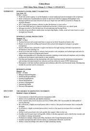 Demand Planner Resume Samples Velvet Jobs Meeting S Sevte