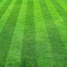 Mowing Patterns New Best Lawn Mowing Patterns Cardinal Lawns
