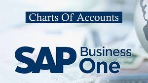 Sap Business One Chart Of Accounts Account Segmentation Setting Chart Of Accounts