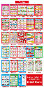 Preschool Wall Charts Details About Baby Preschool Education Chinese Learning Wall Chart Poster 6 10 16 28pc Variety